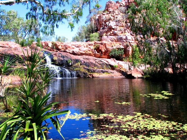 The beautiful pool above Champagne Springs, the Kimberley