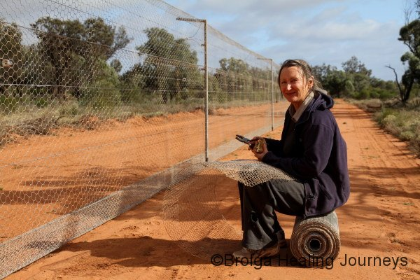 Nirbeeja hard at work on the Wallaby Release Enclosure