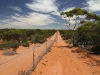 View along the feral-proof fence at Scotia