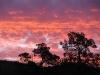 Flinders Ranges - sunset from Acraman campsite