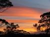 Red Banks Conservation Reserve, SA, sunset