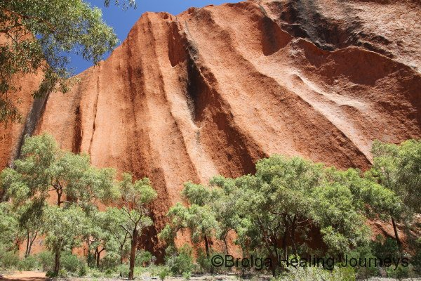 Uluru magnificence - along the walk in to Kantju waterhole.