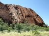 Uluru seen from the Lungkata (Blue Tongue Lizard) walk