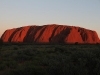 Uluru - the postcard view at sunset.
