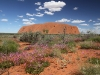Uluru rolls out the Parakeelya carpet