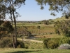 The view across the vineyards from Betany Winery in the Barossa Valley.